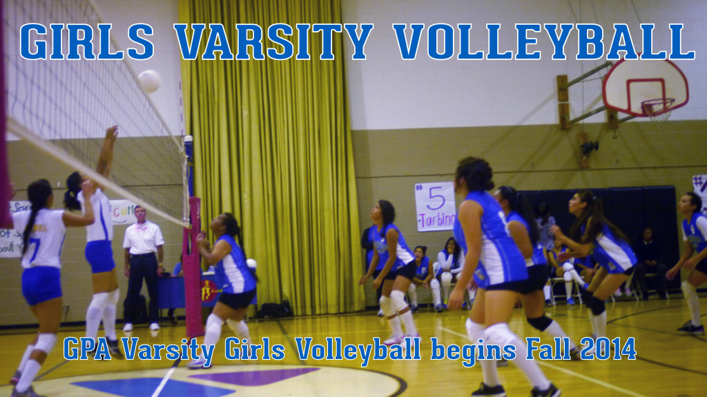 Volleyball_Header-01